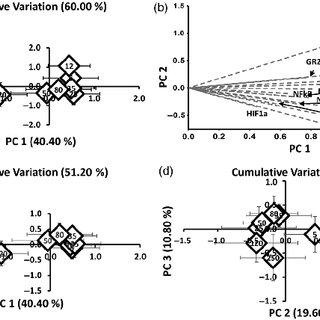 (PDF) Assessments at multiple levels of biological