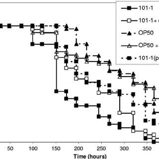 Survival of C. elegans fed with EAEC strains. (A) Kaplan