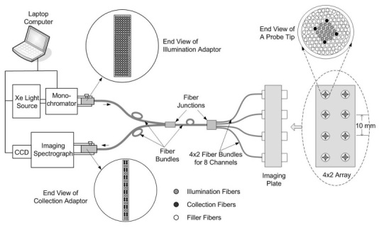 Block diagram of the clinical instrument and the fiber