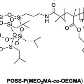 Self-assembly of P(MAPOSS-r-MAPEO) random copolymers