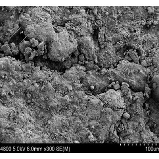 Schematic of pore pressure transmission test setup