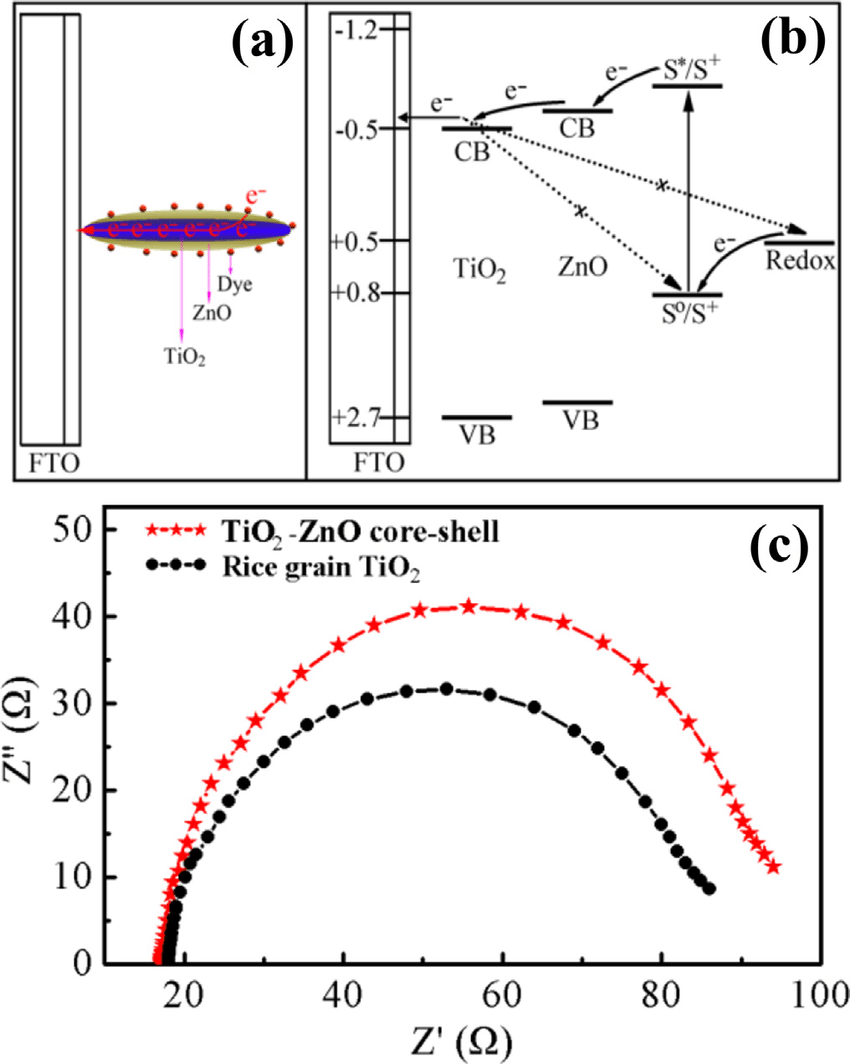 medium resolution of schematic diagram of two effects arising from znoetio 2 core shell rice grain the direct