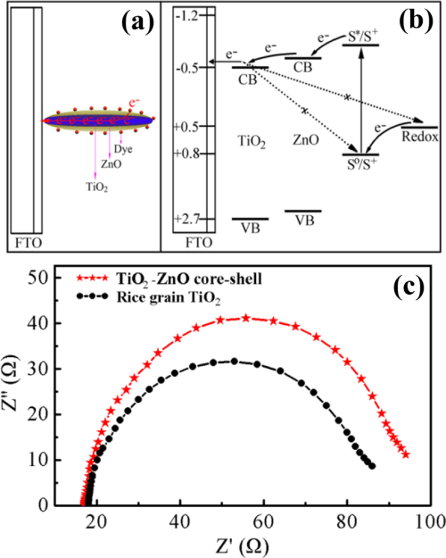 small resolution of schematic diagram of two effects arising from znoetio 2 core shell rice grain the direct