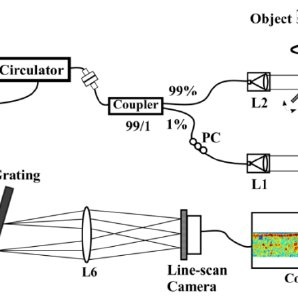 Experimental setup of spectral domain optical coherence
