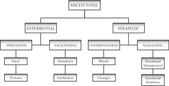 Hierarchy of Mayer-Salovey-Caruso emotional intelligence