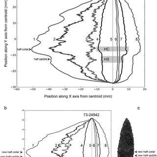Digital images of the 14 stemmed projectile points