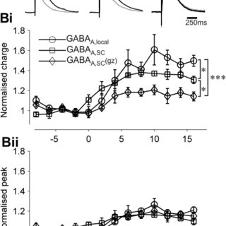The enhancing effect of zolpidem is larger on GABAA,local