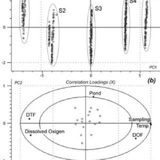 (PDF) Pathogenic and non pathogenic Vibrio species in