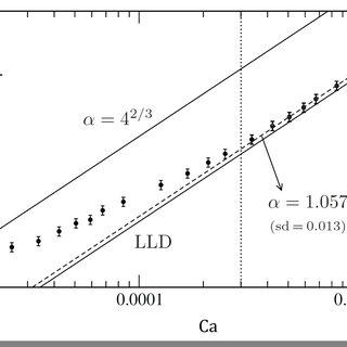 6-(a) Structure générale d'un tensioactif, molécule