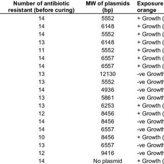 Plasmid profile of multidrug resistant S. aureus isolates