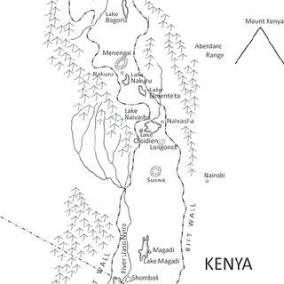 (PDF) Mass developments of a small sized ecotype of