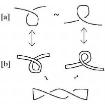 (PDF) TOPICAL REVIEW: Knot theory and a physical state of