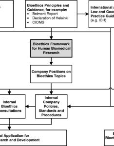 Flowchart of the input and output framework flow diagram illustrates how bridges external internal guidance also rh researchgate