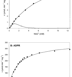 primary plots of nad and adpr hydrolyzing activity of act a nad hydrolyzing activity [ 850 x 1287 Pixel ]