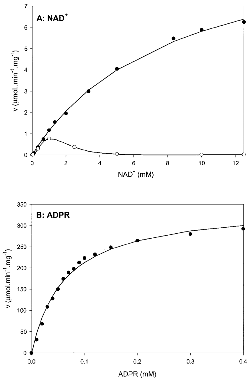 hight resolution of primary plots of nad and adpr hydrolyzing activity of act a nad hydrolyzing activity
