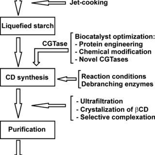 (PDF) Engineering of cyclodextrin glucanotransferases and