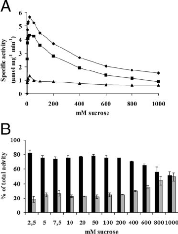 Effect of sucrose concentration on SucB activity. (A