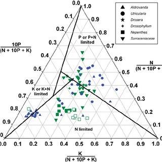 Tissue nutrient content of nitrogen (N), phosphorus (P