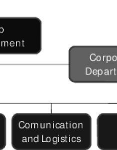 Zara  organization chart also download scientific diagram rh researchgate