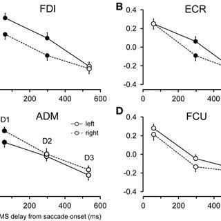 Model predictions of changes in MEP amplitude in the ECR