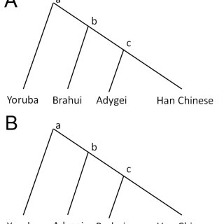 (PDF) An Ethnolinguistic and Genetic Perspective on the