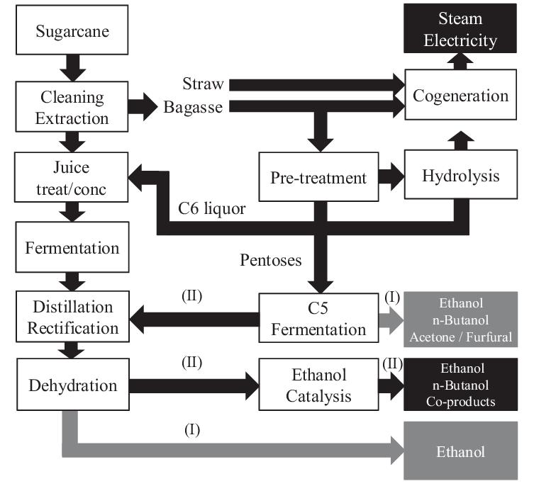 Block flow diagram of a sugarcane ethanol plant with