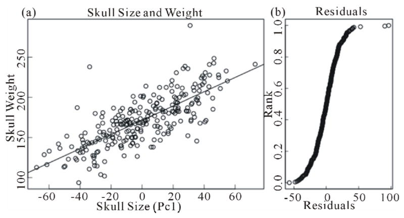 Correlation of skull weight with skull size. (a) Scatter
