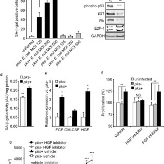 (PDF) Bacterial genotoxin colibactin promotes colon tumour