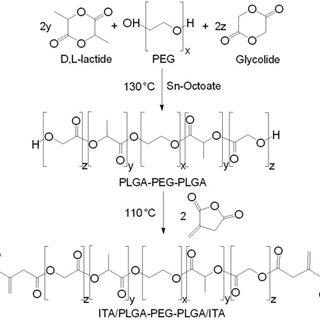 (PDF) The effect of PLGA-PEG-PLGA modification on the sol