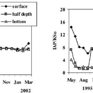 Seasonal variation of the ratio between the ion activity