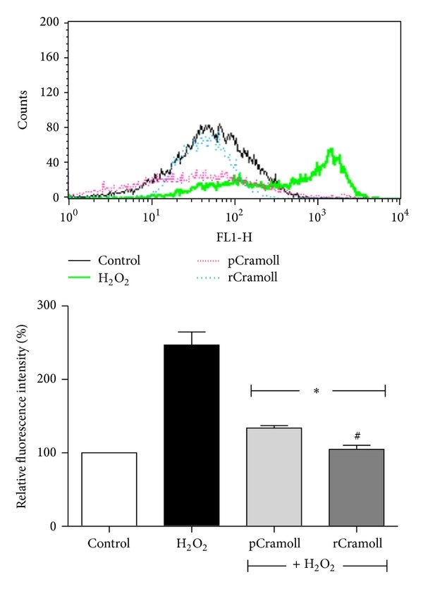 hight resolution of effect of pcramoll and rcramoll on h2o2 induced loss of m in vero cells