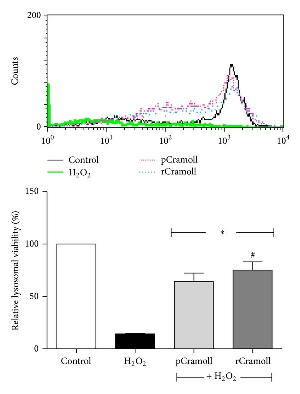 hight resolution of effects of pcramoll and rcramoll on the deleterious effects of h2o2 on cell proliferation using cfse