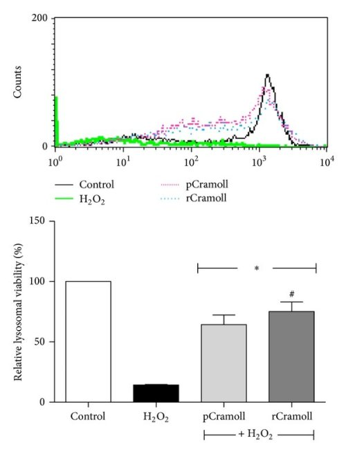 small resolution of effects of pcramoll and rcramoll on the deleterious effects of h2o2 on cell proliferation using cfse
