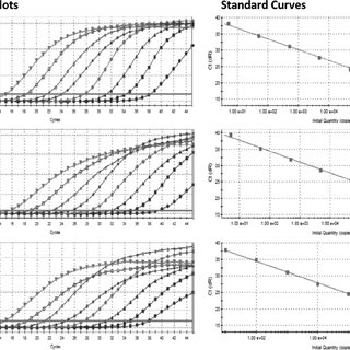 Algorithm for MERS-CoV rRT-PCR specimen testing and