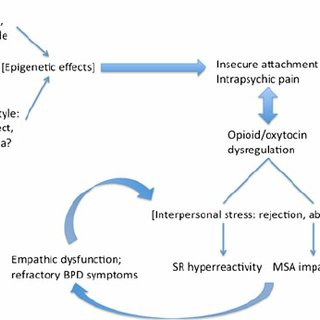 emotional cycle of abuse diagram 1995 nissan 240sx fuel pump wiring a neurobiological model empathic dysfunction in borderline... | download scientific
