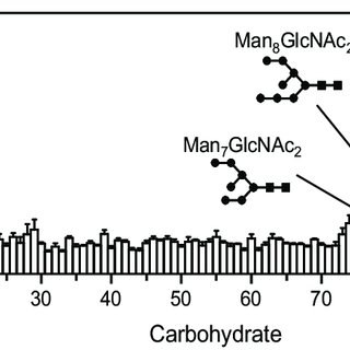 Glycan Array analysis of Dectin-2 CRD specificity. Graph