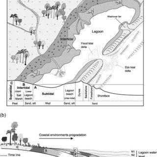 (PDF) Paleoenvironmental reconstruction of a Late