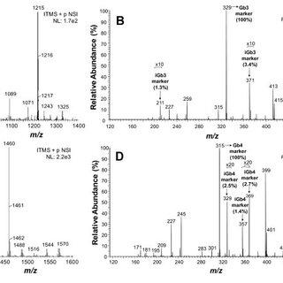 ESI-LIT-MS analysis of GM3-depleted permethylated neutral