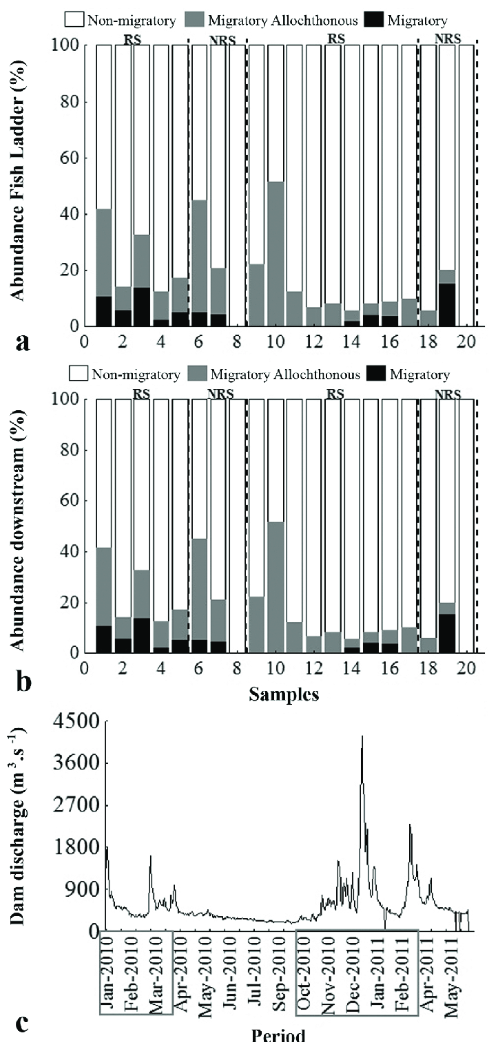 hight resolution of temporal variation of fish groups abundance inside the fish ladder a and downstream