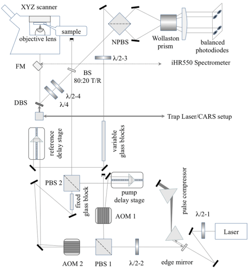 small resolution of 10 a schematic of the fwm setup coupled into nikon ti u inverted microscope