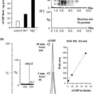 (PDF) The Arabidopsis thaliana Brassinosteroid Receptor