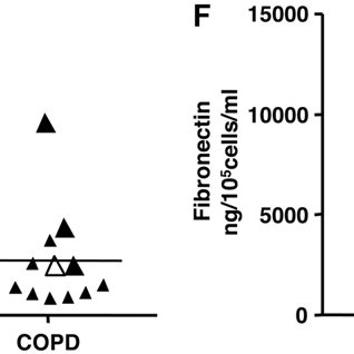(PDF) Lung Fibroblast Repair Functions in Patients with
