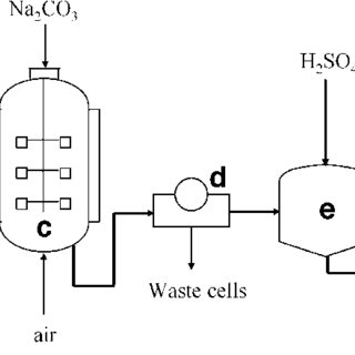 Plant for fumaric acid production from malic acid. a