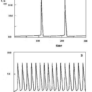 Typical IR-spectra of calcium carbonate-phosphate samples