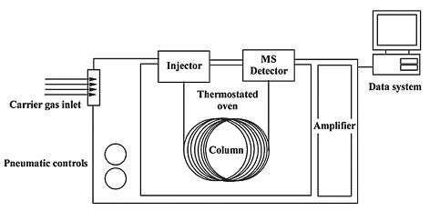 Fig. No. 4: GC-MS APPLICATION Thermally labile compounds