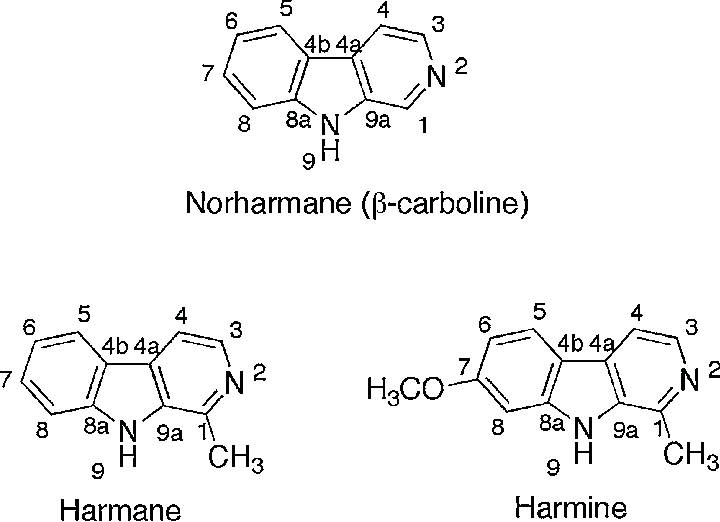Chemical structures of norharmane, harmane and harmine