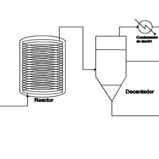 Schematic process diagram of biodiesel production process