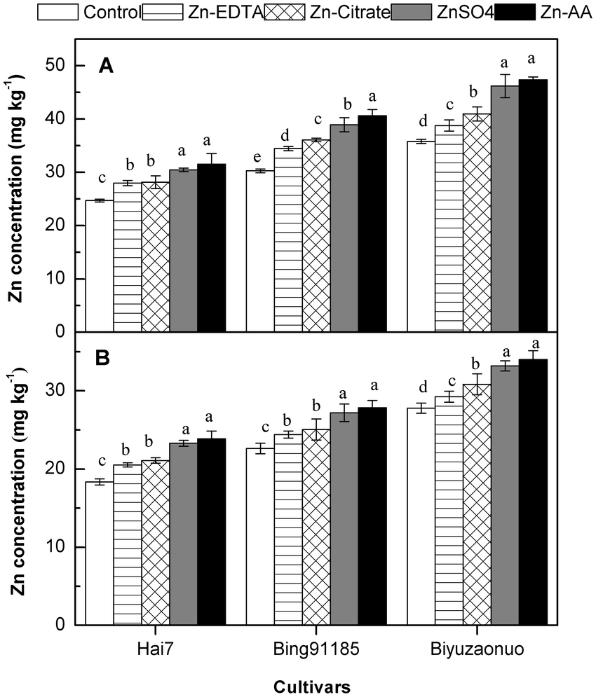 medium resolution of zn concentration in rice grain among three cultivars a zn concentration in brown
