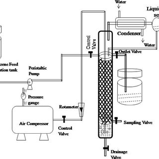 Flow diagram for bioreactor system (packed/continuous