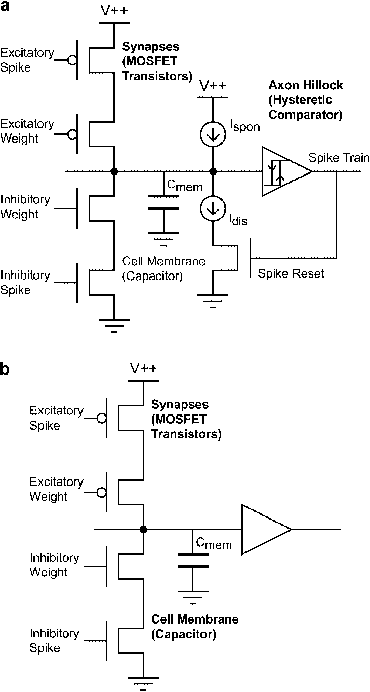 hight resolution of schematic of neurons implemented on the cpg chip a pacemaker and integrate and